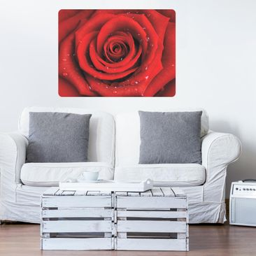 Immagine del prodotto Poster adesivo Wall Mural Red rose with water drops