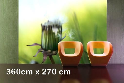 Produktfoto Selbstklebende Tapete - Fototapete No.KP222 Green Silence