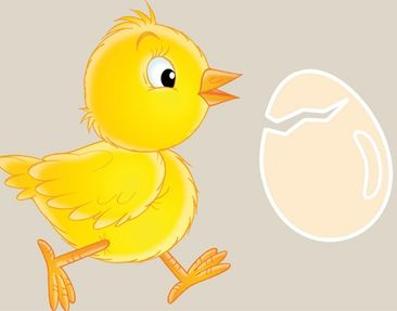 Product picture Wall Mural Border Chick