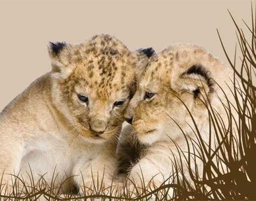 Produktfoto Selbstklebende Bordüre Löwen Babys