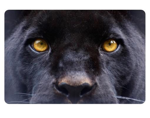 Produktfoto Selbstklebendes Wandbild Power of Puma