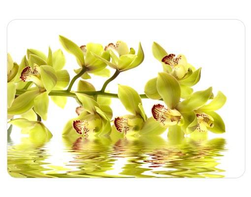 Produktfoto Selbstklebendes Wandbild Splendid Orchid Waters
