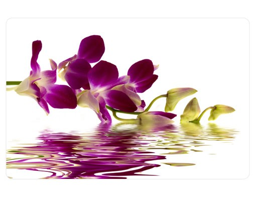 Produktfoto Selbstklebendes Wandbild Pink Orchid Waters