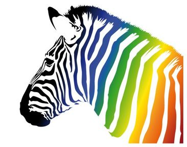 Product picture Wall Decal no.252 Rainbow Zebra