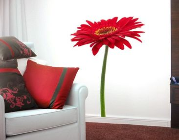 Product picture Wall Decal No.226 Strong Gerbera Red