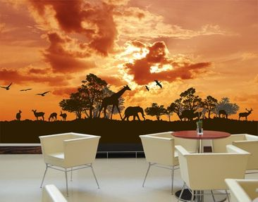 Product picture Photo Wall Mural Tanzania Sunset
