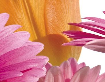 Product picture Wall Mural Flower Melody Triptych I