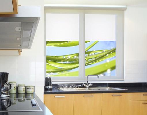 Produktfoto Fensterfolie - Sichtschutz Fenster Fresh Green - Fensterbilder