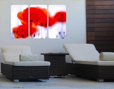 Produktfoto Wall Mural Magic Poppies Triptych I
