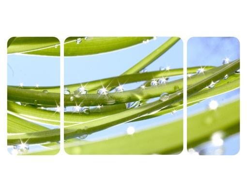 Produktfoto Selbstklebendes Wandbild The Fresh Green Triptychon