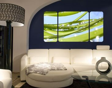 Produktfoto Wall Mural The Fresh Green Triptychon