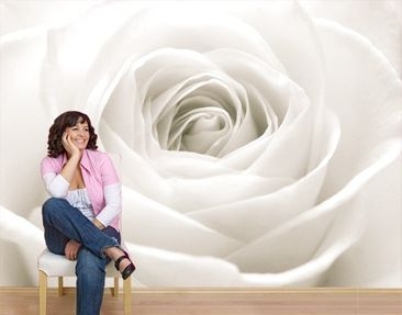 "Produktfoto Photo wall mural no.40 ""THE WHITE ROSE""..."