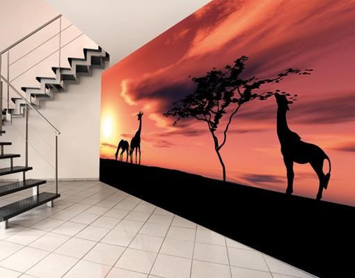 "Produktfoto Papiertapete – Fototapete No.19 ""AFRICAN SAVANNAH"" 500x280cm"