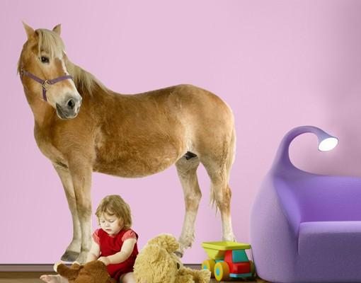Produktfoto Wandtattoo Pferd No.308 Haflinger