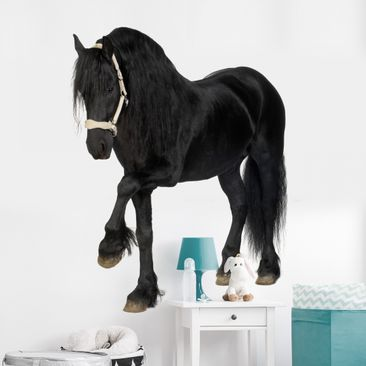 Produktfoto Wall Decal no.276 Friesian Mare
