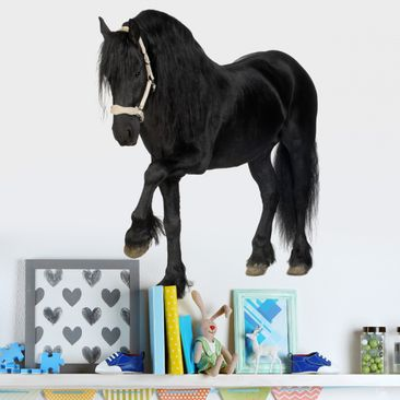 Product picture Wall Decal no.276 Friesian Mare