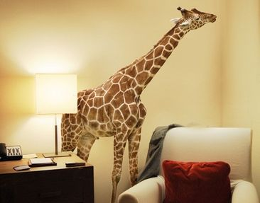 Produktfoto Wall Decal no.316 Nibbling Giraffe