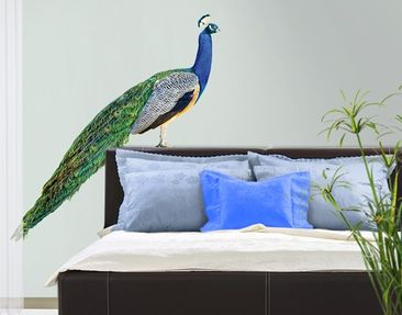 Produktfoto Wall Decal no.320 Peacock