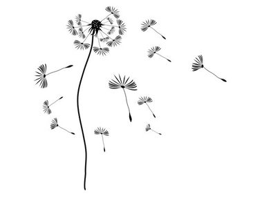 Product picture Window Sticker no.199 Dandelion