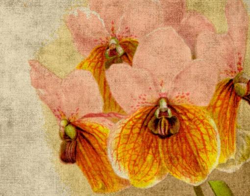 Produktfoto Selbstklebendes Wandbild Forgotten Beauty III