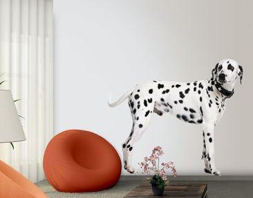 Produktfoto Wandtattoo Hund No.357 My Loyal Friend