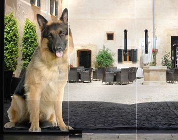 Produktfoto Window Sticker No.360 German Shepard
