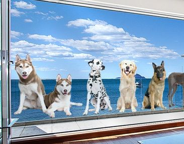 Produktfoto Window Sticker No.368 Dogs Set II