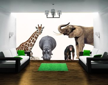 Produktfoto Wall Decal No.406 African Safari Set