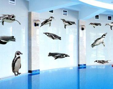 Immagine del prodotto Adesivo murale no.391 Humboldt-Penguin Set