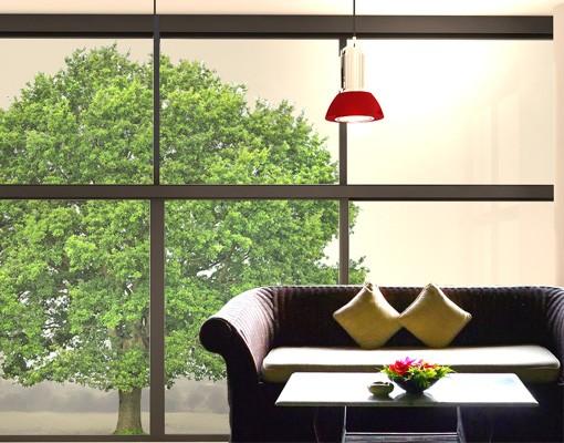 Produktfoto Fensterfolie - Fenstersticker No.393 Sommerlinde - Fensterbilder