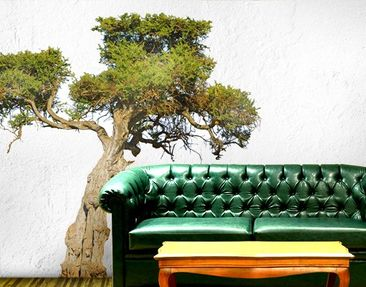 Produktfoto Wall Decal no.394 Olive Tree