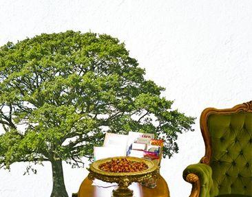 Produktfoto Wandtattoo Wald - Baum No.395 Linde