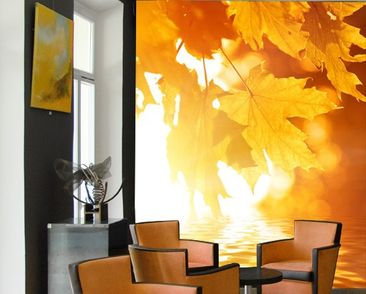 Product picture Photo Wall Mural Autumn Leaves