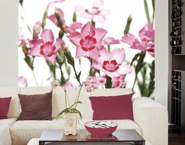 Produktfoto Photo Wall Mural Pink Flowers