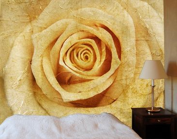 Product picture Photo Wall Mural Vintage Rose