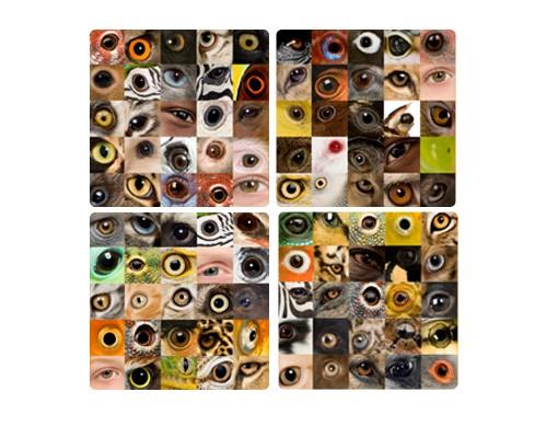 Produktfoto Selbstklebendes Wandbild Eyes of the World Quattro