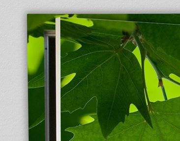 Product picture Door Wall Mural Green Ambiance III