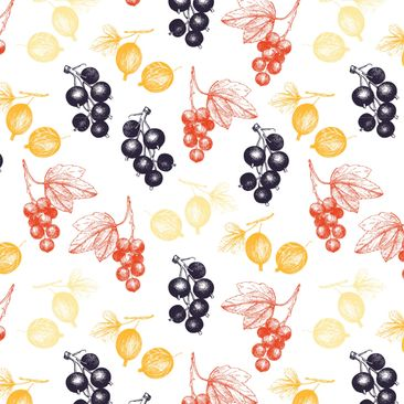 Immagine del prodotto Pellicola adesiva - Hand drawn berries pattern for kitchen