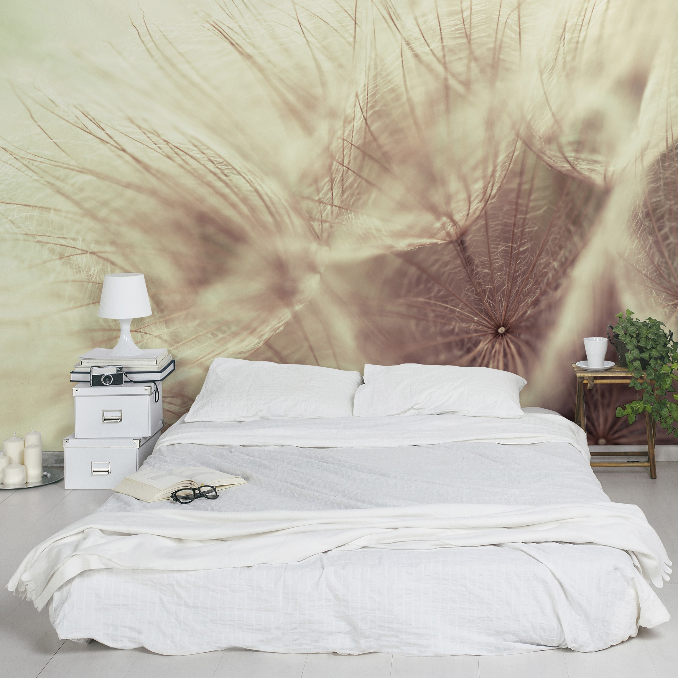 selbstklebende tapete detailreiche pusteblumen makroaufnahme mit vintage blur effekt. Black Bedroom Furniture Sets. Home Design Ideas