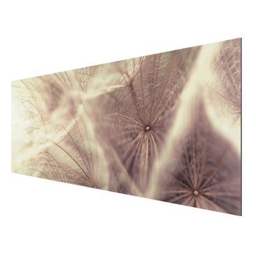 Product picture Aluminium Print - Mural Detailed...
