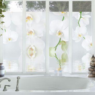 Produktfoto Orchideenbild Fensterfolie - Sichtschutz Fenster Wellness Orchidee - Blumen Fensterbilder