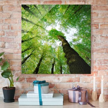 Product picture Print on Glass - Trees of life - Glass...