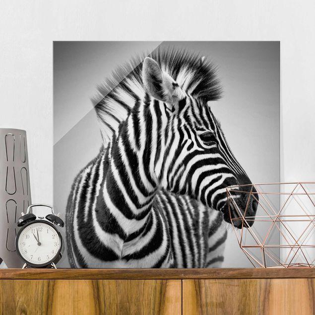 Produktfoto Glasbild - Zebra Baby Portrait II - Quadrat 1:1