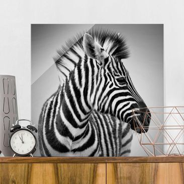 Product picture Print on Glass - Zebra Baby Portrait II...