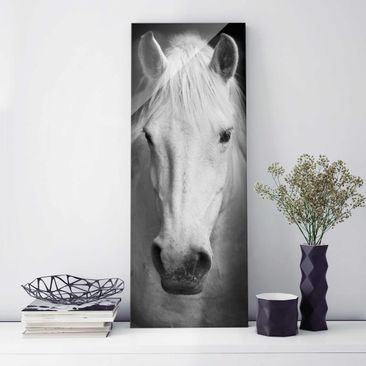 Product picture Print on Glass - Dream of a Horse -...