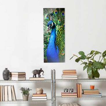 Product picture Print on Glass - Precious Peafowl -...