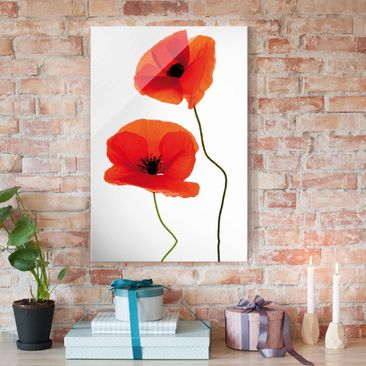 Produktfoto Glasbild - Charming Poppies - Hoch 3:2 -...