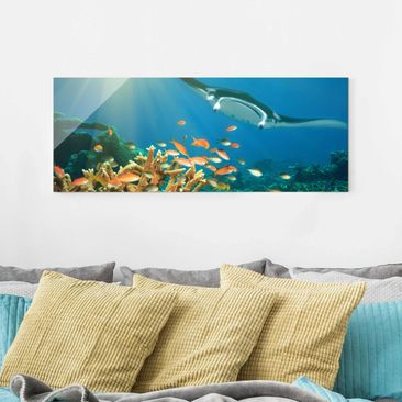 Product picture Print on Glass - Coral reef - Glass Wall...