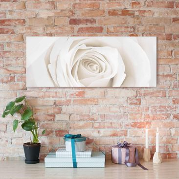 Produktfoto Glasbild - Pretty White Rose - Panorama...
