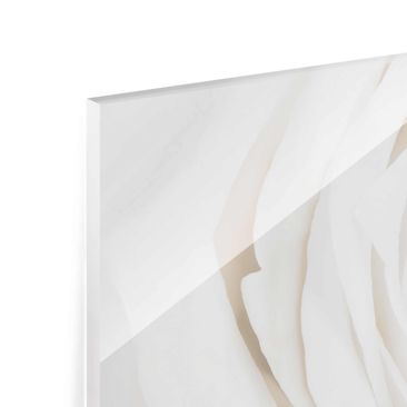 Product picture Print on Glass - Pretty White Rose -...